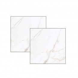 Porcelanato Tecnogres A 58x58cm Ptg 58090r