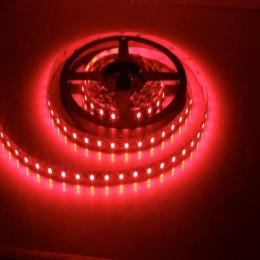 FITA LED G LIGHT 25W 5M VERMELHA